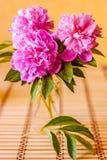 Blumenstrauß von rosa Blumen Stockbild