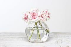 Blumenstrauß von rosa Gartennelken im kleinen Glasvase. Stockbild