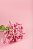 Blumenstrauß von rosa Tulpen auf rosa Hintergrund Lizenzfreie Stockfotos