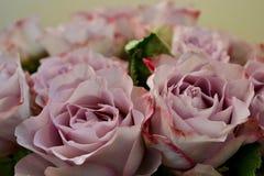 Blumenstrauß von Rosen lizenzfreies stockbild