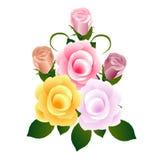 Blumenstrauß von Rosen auf Weiß Stockbilder
