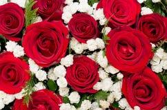 Blumenstrauß von roten Rosen und von weißer Blume im Herzen formte Kasten Lizenzfreies Stockbild