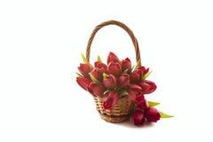 Blumenstrauß von roten Tulpen Stockfotografie