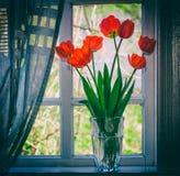 Blumenstrauß von roten Tulpen der Blumen in einem Glasvase auf der Fensterbrettnahaufnahme Stockfotografie