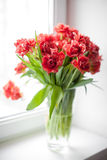 Blumenstrauß von roten Tulpen in einem Glasvase Stockbilder