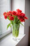 Blumenstrauß von roten Tulpen in einem Vase Stockbild