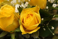 Blumenstrauß von schönen gelben Rosen Lizenzfreies Stockfoto