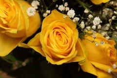 Blumenstrauß von schönen gelben Rosen Stockfoto