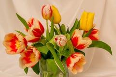 Blumenstrauß von schönen gelben und rot-weißen Tulpen stockbild