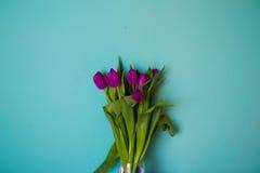 Blumenstrauß von schönen vibrierenden Blättern der Blumentulpen von Stämmen auf einem blauen Hintergrund Lizenzfreie Stockfotos