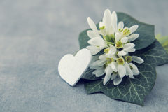 Blumenstrauß von Schneeglöckchen auf grauem Steinhintergrund mit Kopienraum f Stockfotos