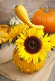 Blumenstrauß von Sonnenblumen im Kürbis Stockbilder