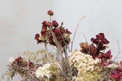 Blumenstrauß von Trockenblumen auf untröstlichem Konzept Stockfoto