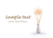 Blumenstrauß von Trockenblumen im Vase mit Platz für Text lizenzfreie abbildung