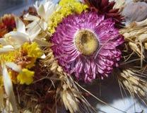 Blumenstrauß von Trockenblumen und von Mohnblumen Stockbilder