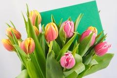 Blumenstrauß von Tulpen Stockfoto