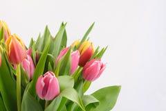 Blumenstrauß von Tulpen Stockfotos