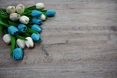 Blumenstrauß von Tulpen auf einem hölzernen Hintergrund Stockfoto