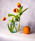Blumenstrauß von Tulpen in einem Glasgefäß und in einer Orange in den Wassertröpfchen Lizenzfreies Stockfoto