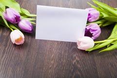 Blumenstrauß von Tulpen und von Papier Stockfoto