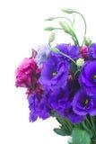 Blumenstrauß von violetten und malvenfarbenen Eustomablumen Lizenzfreies Stockbild