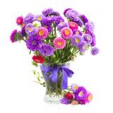 Blumenstrauß von violetten und rosa Asterblumen Stockfotos