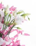 Blumenstrauß von Weiß und von Rosa stockfotos