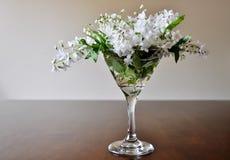 Blumenstrauß von weißen Blumen in Martini-Glas Stockfotos