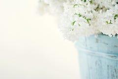 Blumenstrauß von weißen lila Frühlingsblumen Stockfotos