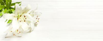Blumenstrauß von weißen Lilien auf einer Draufsicht des weißen hölzernen Hintergrundes Blüht weiße Blumen des schönen Blumenstrau lizenzfreies stockbild