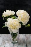 Blumenstrauß von weißen Pfingstrosen in einem Vase stockfotografie