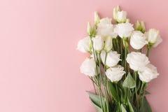 Blumenstrauß von weißen Rosen auf Rosa Stockfotografie