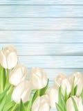 Blumenstrauß von weißen Tulpen ENV 10 Lizenzfreie Stockfotos