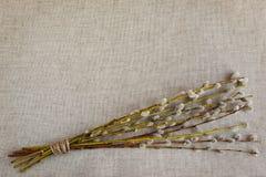 Blumenstrauß von Weidenkätzchen auf natürlichem Leinengewebe Hintergrund wi Stockbild