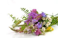 Blumenstrauß von Wildflowers Stockbild