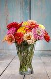 Blumenstrauß von Zinniablumen Lizenzfreie Stockbilder