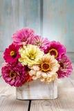 Blumenstrauß von Zinniablumen Stockbilder