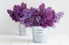 Blumenstrauß zwei von lila Blumen Stockfotos