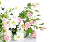 Blumenstraußblumen auf weißem Hintergrund Stockfotografie