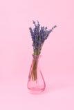Blumenstraußlavendel in einem Vase auf einer minimalen Art des rosa Hintergrundes Lizenzfreie Stockbilder
