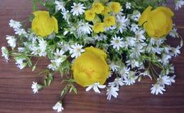 Blumenstraußmusterprimelnahaufnahmefarbblüht blühender Blattwald makro gelbe Blumenwiesenblumenblattgrasblüten-Blütenflora w Stockfoto