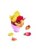 Blumenstraußtulpen lizenzfreies stockfoto
