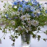 Blumenstraußwald blüht Blütenschönheits-Florablau des Blumenjahreszeitblattbotaniknahaufnahmegrassommers der weißen Blume des mus Lizenzfreie Stockfotografie