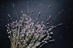 Blumenstrauß des Lavendels auf einem schwarzen Hintergrund stockbilder