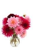Blumenstrauß der Dahlien Stockbilder