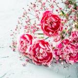 Blumenstrau? der rosa Gartennelke auf h?lzernem Hintergrund des hellen T?rkises stockbilder