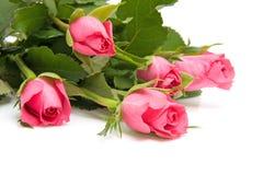 Blumenstrauß der rosafarbenen Rosen Lizenzfreie Stockbilder