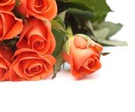 Blumenstrauß der Rosen Stockfotos
