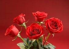 Blumenstrauß der Rosen auf dem roten Hintergrund Stockfotografie