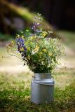 Blumenstrauß der wilden Blumen Stockbilder